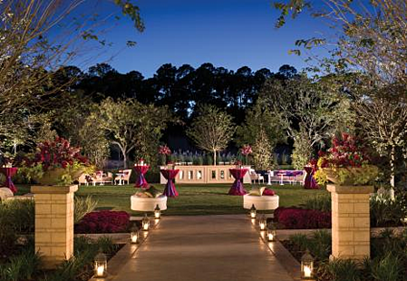 King Meadow Lawn - Four Seasons Orlando